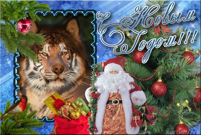 http://alaskanmals.ru/images/Card_NY.jpg